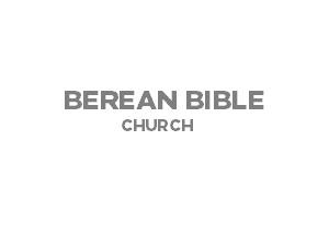 Berean Theme Temp WordPress theme
