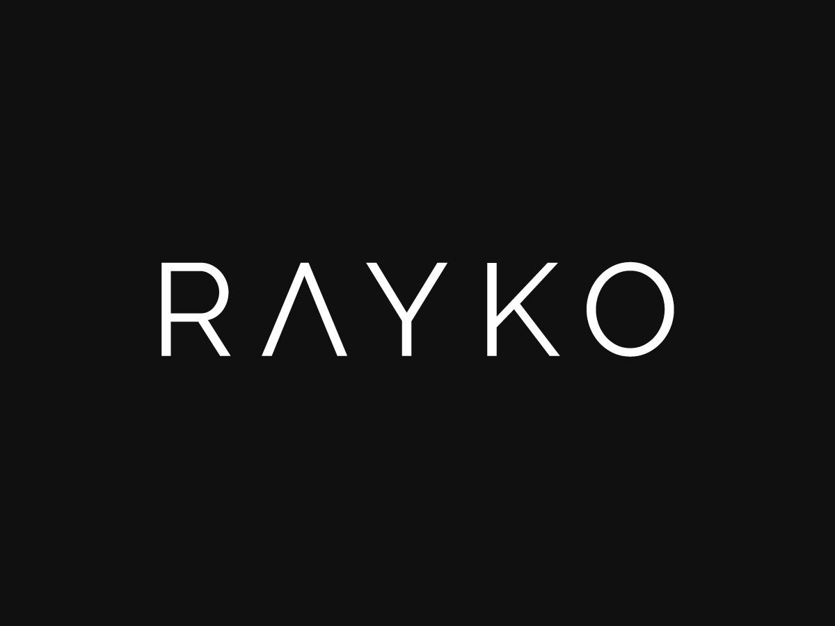 Rayko template WordPress