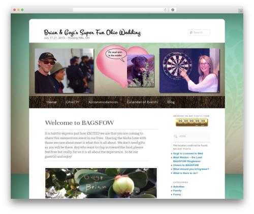 Free WordPress Twenty Eleven Theme Extensions plugin - bagsfow.com