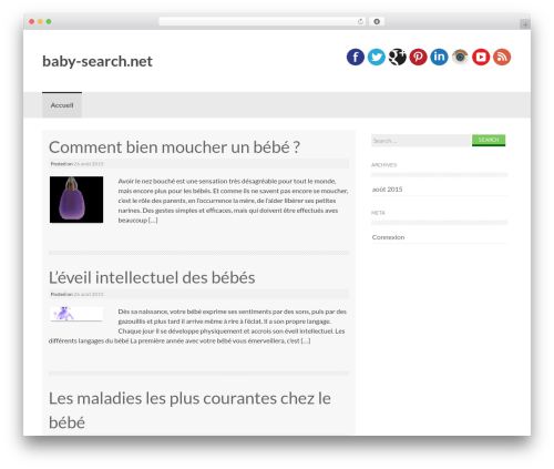 Coller template WordPress free - baby-search.net