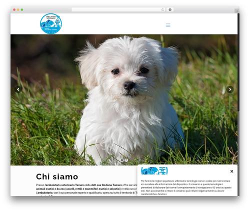 WordPress template Betheme - ambulatoriotamarogiuliana.com