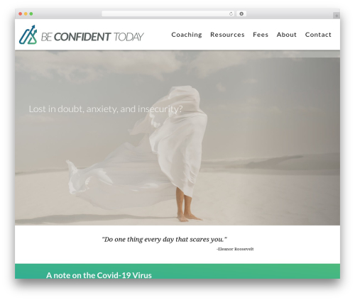 WordPress fresh-framework plugin - beconfidenttoday.com
