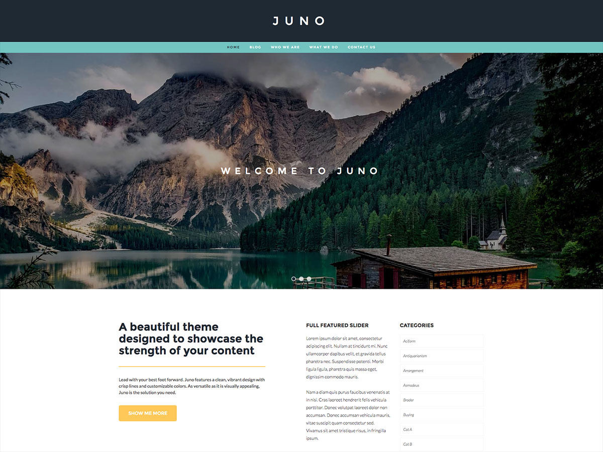Juno Pro WordPress page template