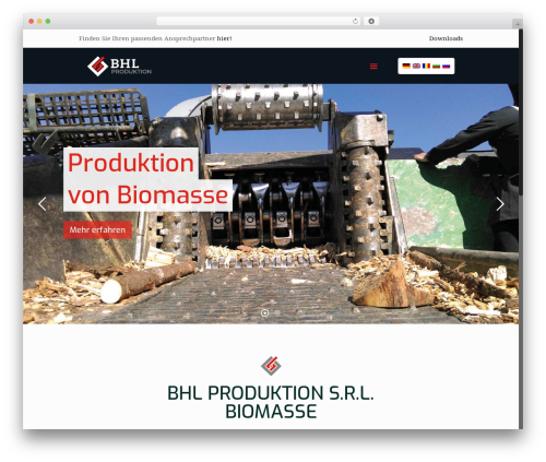 Best WordPress template Betheme - bhl-logistic.com