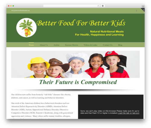 Best WordPress template Avada - betterfoodforbetterkids.org