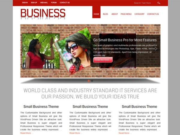 Small Business Custom company WordPress theme