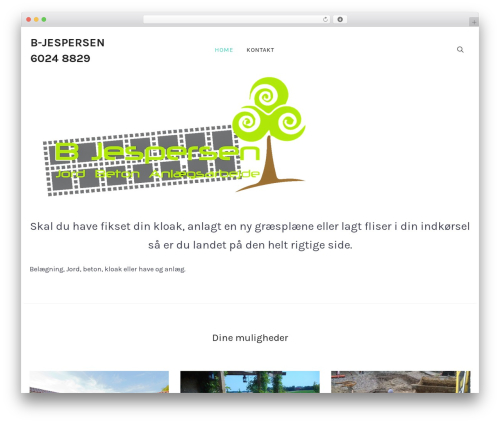 Balance premium WordPress theme - b-jespersen.dk