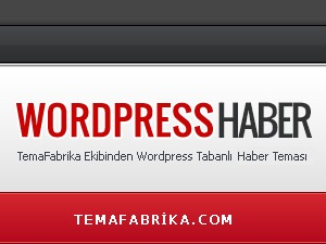 Haber WordPress theme