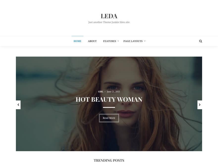 Leda WordPress blog template
