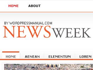 Newsweek newspaper WordPress theme
