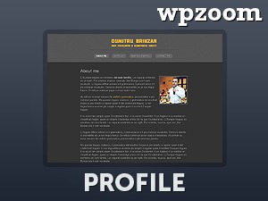 Profile Theme WP theme