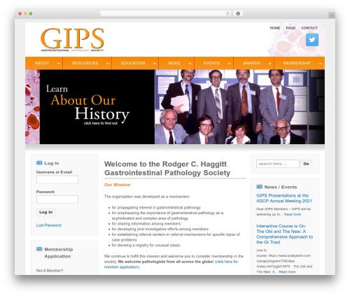 Responsive free WordPress theme - usgips.com