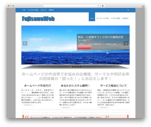 Small Business WordPress theme - fujisawaweb.net