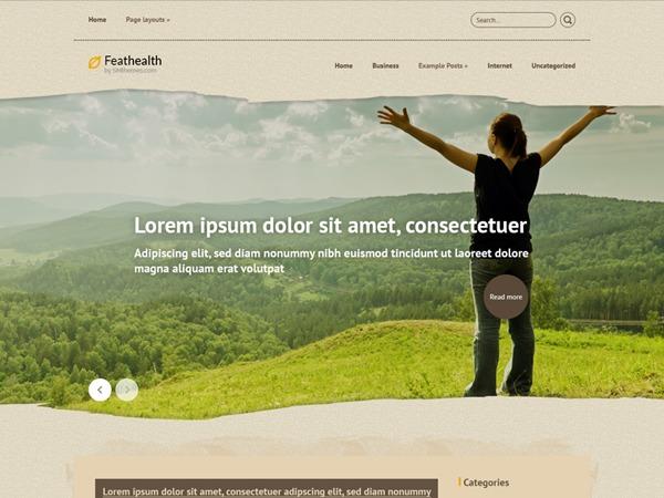 WordPress theme FeatHealth