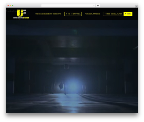 WP template Enfold [Shared By themes24x7.com] - underground.ie