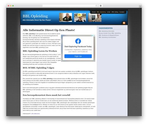 Affiliate Internet Marketing theme WordPress template - bblopleiding.net