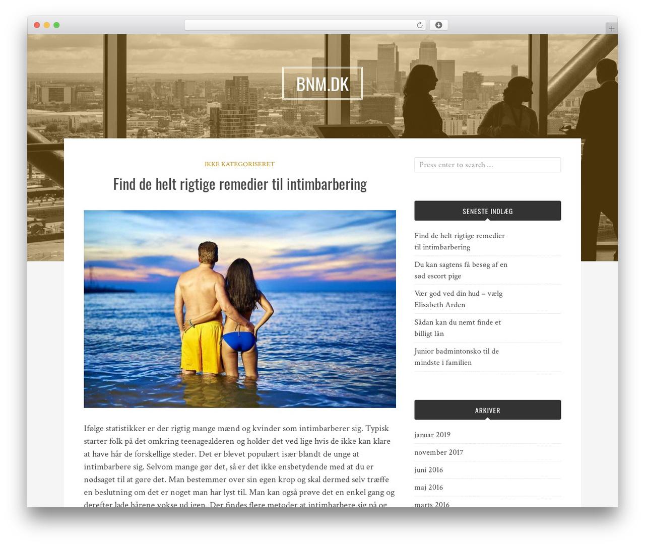 Best WordPress template Bulan - bnm.dk