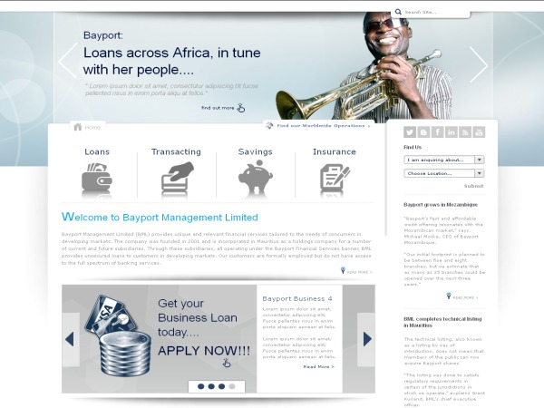 Bayport Financial Services template WordPress