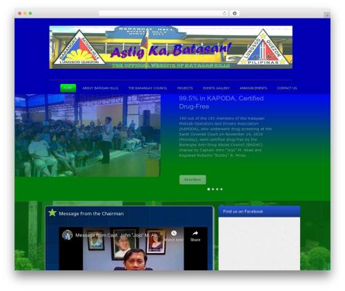 Colorwave premium WordPress theme - barangaybatasan.com