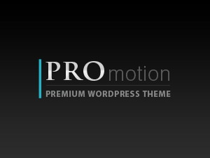 promotionBs company WordPress theme