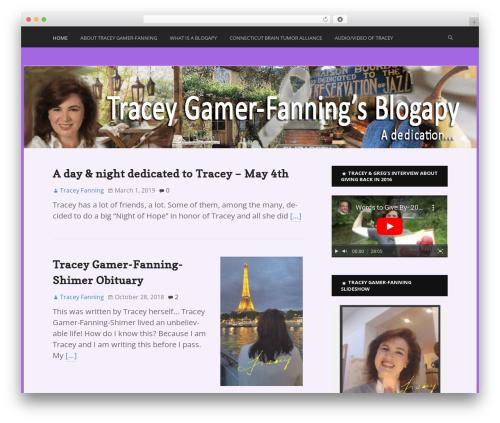 WordPress theme Ex Astris - blogapy.com
