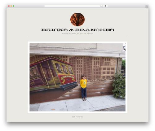Best WordPress theme Bricks - bricksandbranches.com