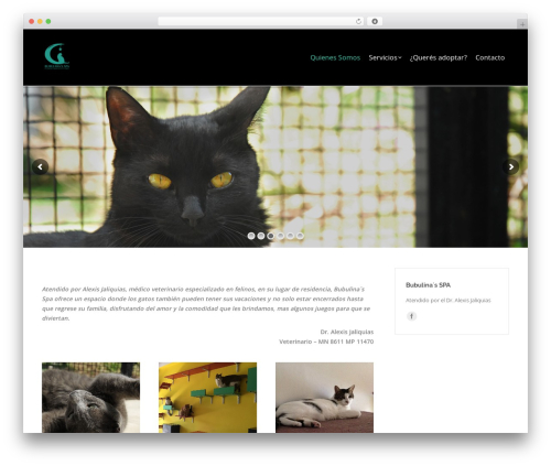 WordPress website template The7 - bubulinaspa.com.ar