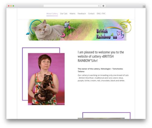 WordPress theme The7 - british-rainbow.com.ua