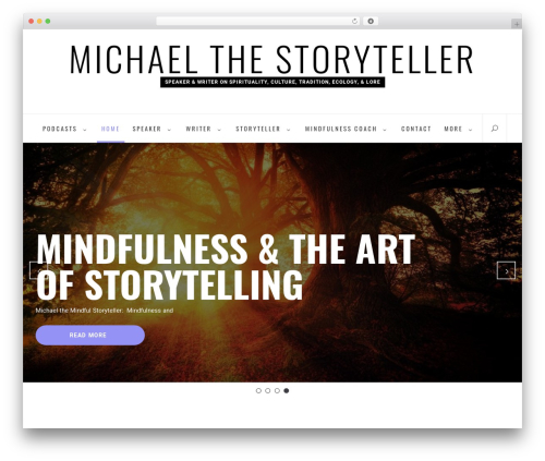 Business Insights company WordPress theme - michaelthestoryteller.com