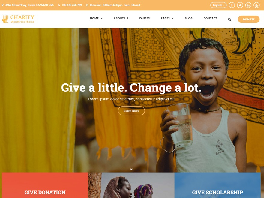 CharityWP WordPress theme