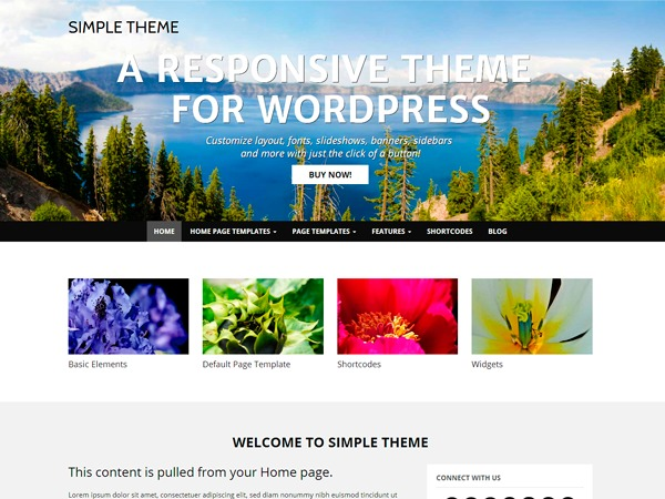 Theme WordPress WP Simple
