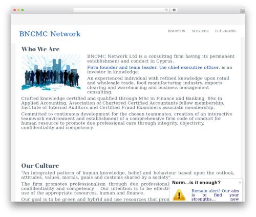 Ravenna free WordPress theme - bncmc.com
