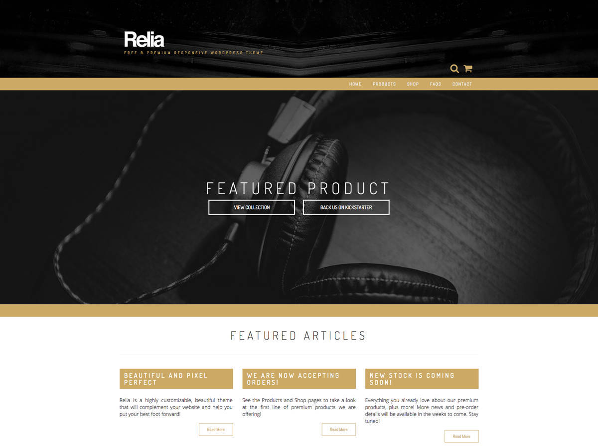 Best WordPress template Relia Child