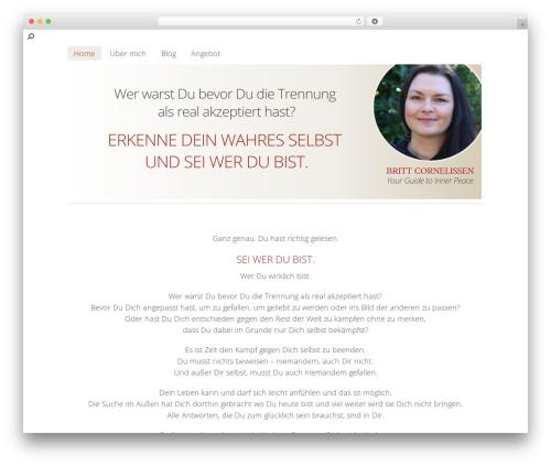 WordPress popupally-pro plugin - brittcornelissen.de
