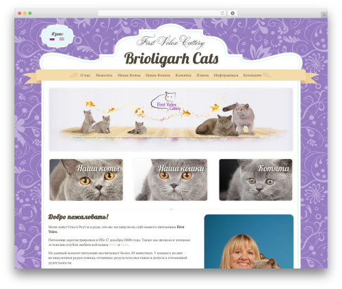 Boutique Kids top WordPress theme - brioligarh.com