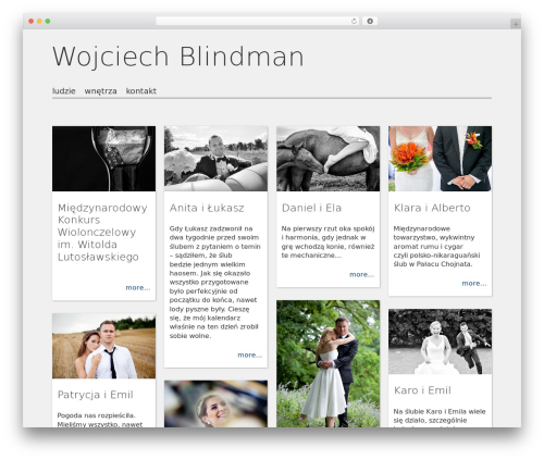 WordPress wp-spamfree plugin - blindman.pl
