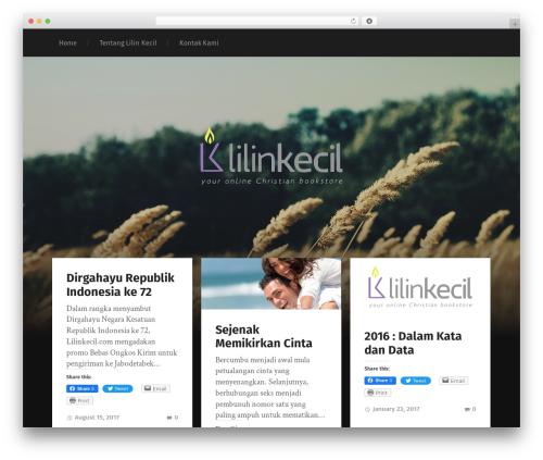 Garfunkel WP template - blog.lilinkecil.com