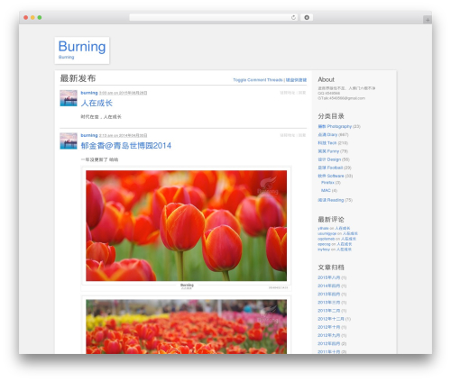 P2 WordPress theme design - burning.im