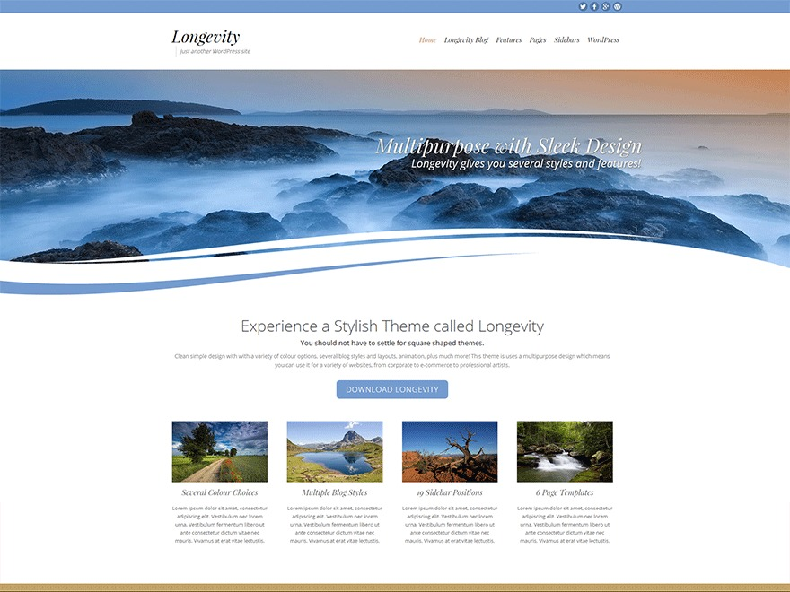 Best WordPress template Longevity_Child