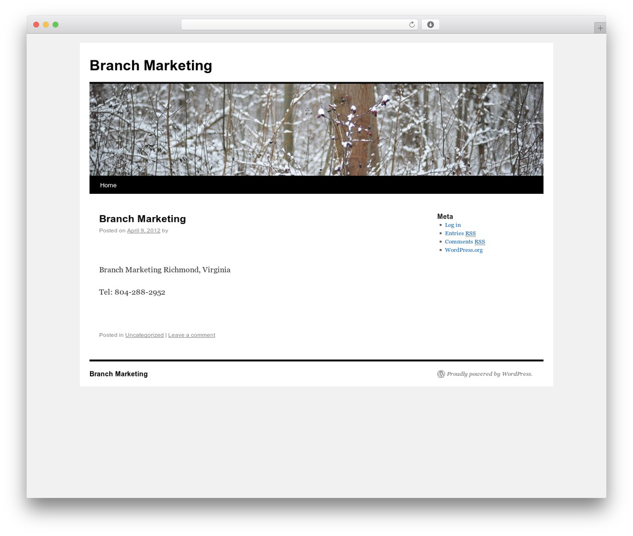 Twenty Ten template WordPress free - branchmarketing.com