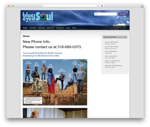 Third Style best WordPress template - blueeyedonline.com