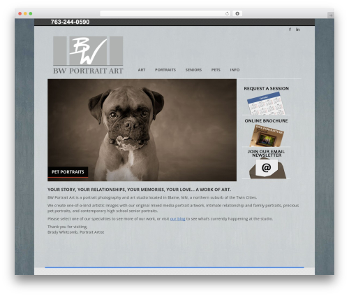 Agility WordPress theme - bwportraitart.com