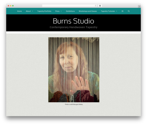Free WordPress WordPress Picture / Portfolio / Media Gallery plugin - burns-studio.com