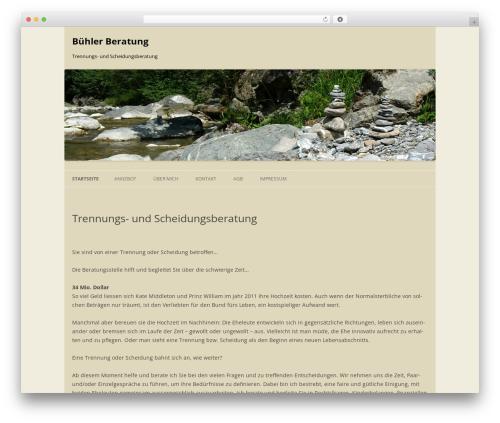 WordPress website template Bühler Beratung - buehler-beratung.ch