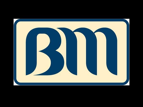 binamekar company WordPress theme