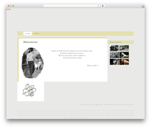 Template WordPress Custom Community Child - boule-poils.fr