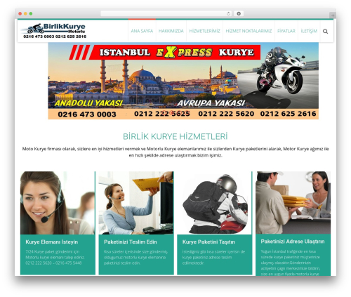 AccessPress Ray free website theme - birlikkurye.com