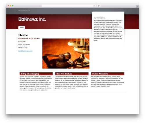 Fusion WordPress theme - bizknowzinc.com