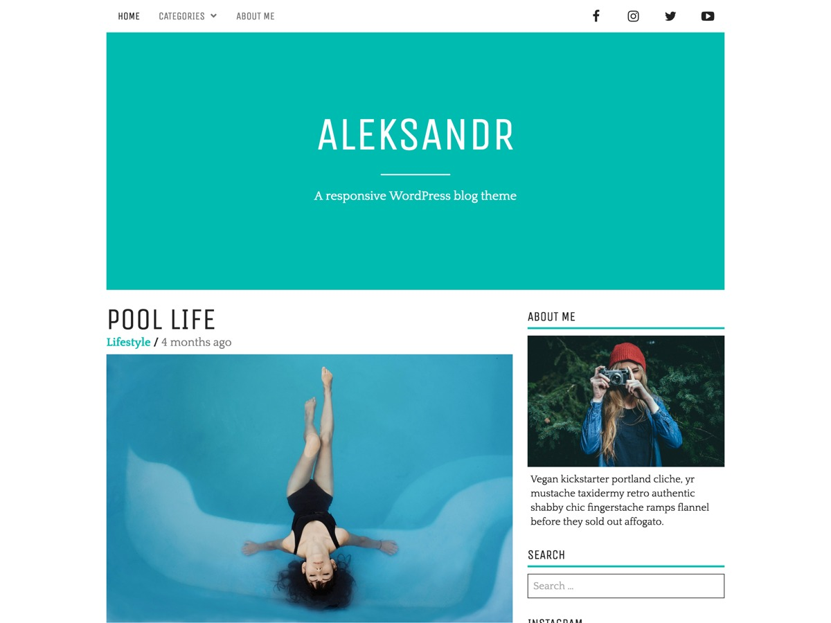 Aleksandr WordPress theme download
