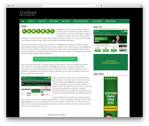 BizPoint best WordPress template - uni-ro.com